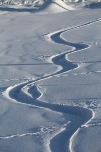 ESCUELA DE SNOWBOARD EN SIERRA NEVADA